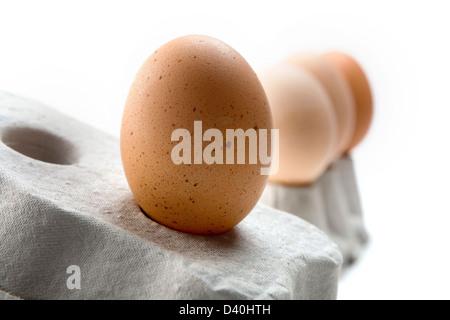 Rangée d'oeufs de poules différentes nuances/couleurs équilibrées sur les boîtes d'œufs gris contre fond blanc Banque D'Images