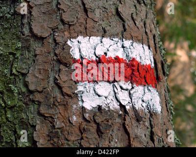 La bande rouge et blanche signe sentier peint sur l'écorce des arbres Banque D'Images