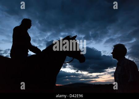 Oberoderwitz, Allemagne, silhouette, femme, l'homme et le cheval en mode portrait au crépuscule Banque D'Images