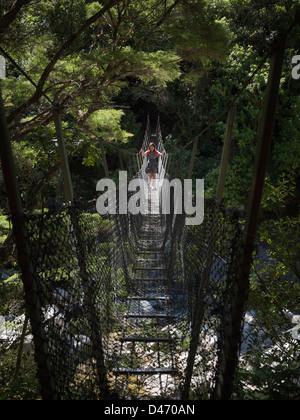 Pont suspendu au-dessus de la rivière Wainui, parc national Abel Tasman, île du Sud, Nouvelle-Zélande. Banque D'Images
