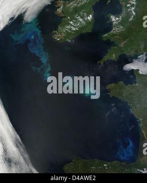 La floraison du phytoplancton dans l'Atlantique Nord