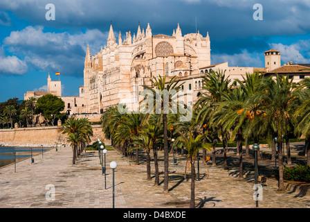 Palma, Majorque, Espagne: la cathédrale de Santa Maria de Palma, plus communément appelée La Seu, est une cathédrale Banque D'Images