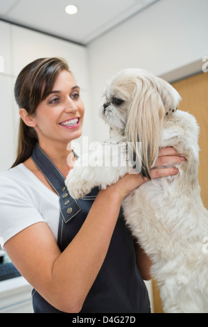 Toiletteur holding dog in office Banque D'Images