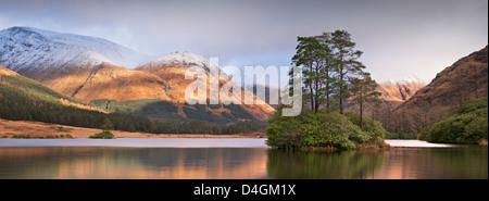 Dans l'île de Lochan Urr dans Glen Etive, en Écosse. L'hiver (novembre) 2012. Banque D'Images