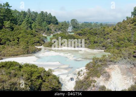 Waiotapu zone thermale, Rotorua, île du Nord, Nouvelle-Zélande Banque D'Images