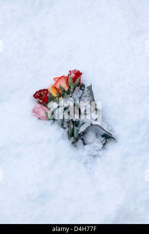 Un bouquet de roses Banque D'Images