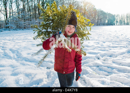 Boy carrying Christmas Tree in snow Banque D'Images