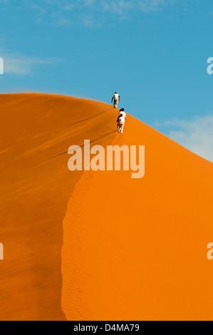 Randonnées dune 45, Sossusvlei, Namib-Naukluft National Park, Namibie Banque D'Images