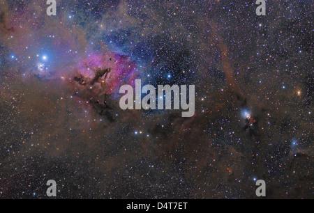 Cette grande région dans la constellation du Taureau contient des objets astronomiques tels que l'IC 348 et NGC 1333.
