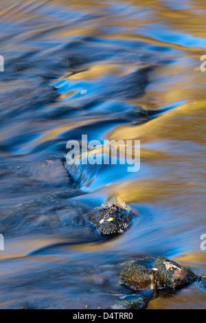 Les tendances de l'automne sur la surface d'un ruisseau, dans le comté de Mayo, Irlande. Banque D'Images