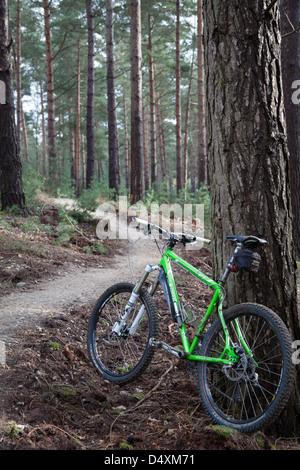 Vtt à Swinley Forest, près de Bracknell Berkshire Banque D'Images