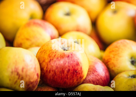 Close up of pile of apples Banque D'Images