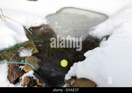 Net et balle dans l'étang du poisson jardin partiellement gelés pour éviter blocage total dans le comté d'Antrim en Irlande du Nord uk