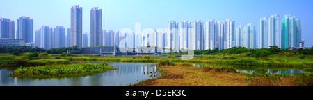 Appartements de grande hauteur au-dessus du parc des zones humides à Hong Kong, Chine. Banque D'Images