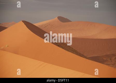 Les dunes de Sossusvlei. Le Parc National Namib Naukluft. La Namibie Banque D'Images