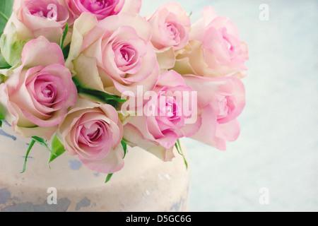 Des roses rose crémeux dans un seau en métal shabby chic vintage sur fond de bois Banque D'Images