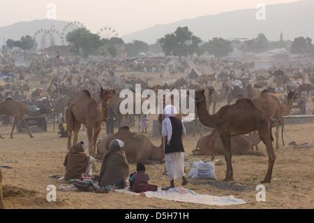 Les hommes du Rajasthan campé dans l'avant d'une mer de chameaux dans le désert avec les grandes roues de la foire Banque D'Images