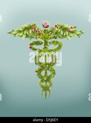 Image d'illustration de caduceus symbol made des herbes qui représente la médecine naturelle Banque D'Images