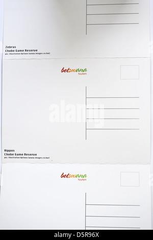 Des images de cartes postales de la faune botswanaise. Banque D'Images