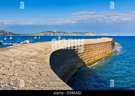 La Cobb à Lyme Regis Dorset England UK GB EU Europe Banque D'Images