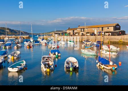 Bateaux de pêche dans le port de Lyme Regis Dorset England UK GB EU Europe Banque D'Images