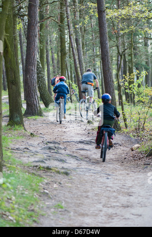 Family riding bicycles à travers forêt près du lac Zemborzycki, Lublin, Pologne, Europe Banque D'Images