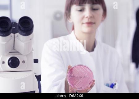 Scientist holding petri dish in lab