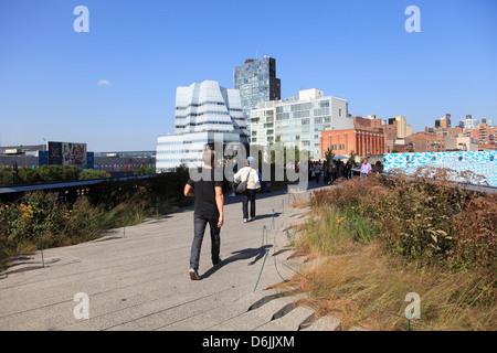 Le parc High Line, un parc public sur l'ancienne voie ferrée, Manhattan, New York City, États-Unis d'Amérique, Amérique du Nord