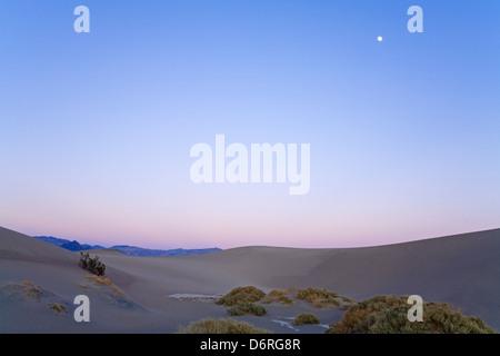 La boue séchée dans la télévision Mesquite Sand Dunes, Death Valley National Park, California, USA, Amérique du Banque D'Images