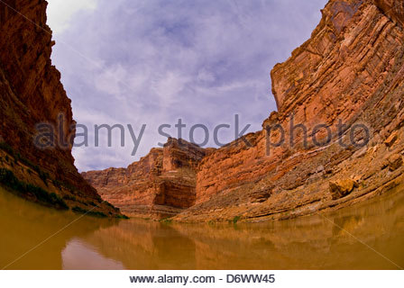 Cove Canyon, Colorado River, Glen Canyon National Recreation Area, Utah USA Banque D'Images