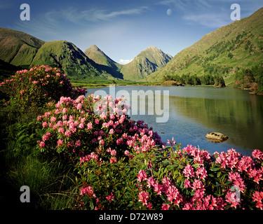 GB - Ecosse: Glen Etive dans les Highlands, l'Argyllshire Banque D'Images