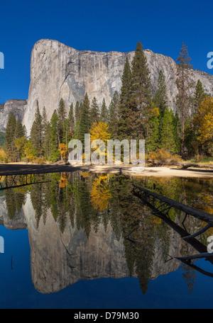 Yosemite National Park, Californie: El Capitan reflète dans la piscine toujours à la Cathédrale, la plage de Yosemite Valley