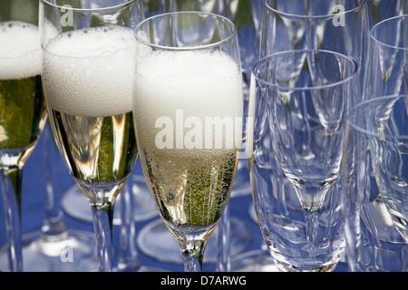 Verre de champagne Banque D'Images