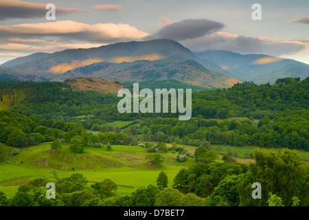 La lumière du matin et de nuages sur le langdale pikes, Cumbria Banque D'Images