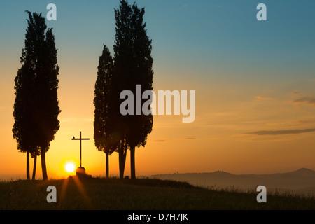 Lever du soleil derrière un seul croisement entre cyprès sur les collines de Toscane, près de Pienza, Italie Banque D'Images