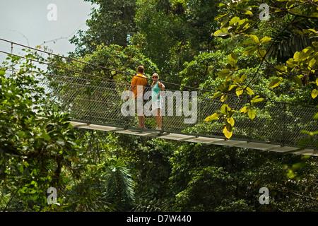 Les touristes en promenade dans la forêt vierge à ponts suspendus d'Arenal, la Fortuna, Province d'Alajuela, Costa Banque D'Images