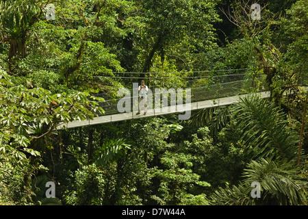 Visiteur à ponts suspendus d'Arenal où de forêt vierge est accessible par des passerelles, la Fortuna, Province Banque D'Images