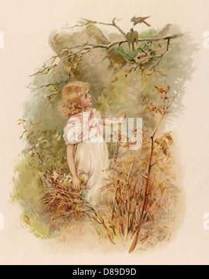 Admire fille Nest 1891 Banque D'Images