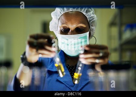 La science et la recherche, femme travaillant comme chemist looking at test tube in laboratory Banque D'Images