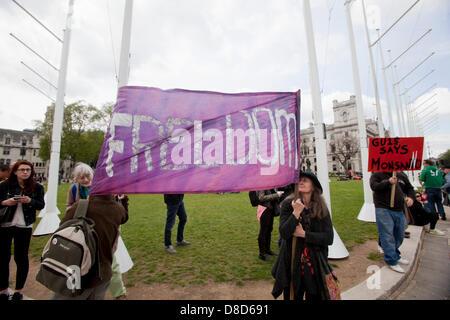 Londres, Royaume-Uni. 25 mai 2013. Lieu des manifestations contre les OGM Monsanto, fabricant de produits alimentaires à l'extérieur du Parlement de Londres dans le cadre d'une journée mondiale d'action contre le géant des semences, Monsanto. Crédit: Sébastien Remme /Alamy Live News