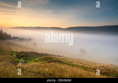 Voir dans la vallée de Scheibe Alsbach le matin, Neuhaus am Rennweg, Sonneberg, forêt de Thuringe, Thuringe, Allemagne Banque D'Images