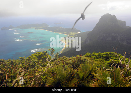 Voir à travers les nuages du sommet du Mont Gower au lagon de l'île Lord Howe, avec la providence floue par vol Banque D'Images