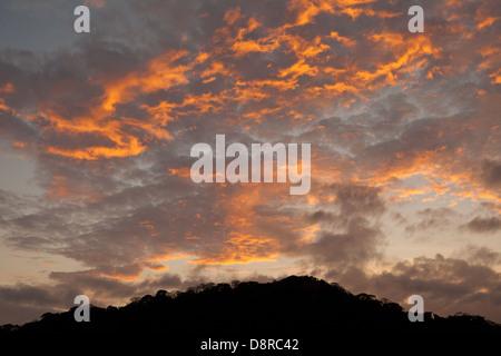 Ciel coloré à l'aube dans le parc national de Soberania, province de Panama, République du Panama. Banque D'Images