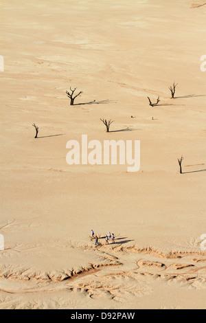 Les arbres morts (probablement de 900 ans), et les touristes à Deadvlei, Namib-Naukluft National Park, Namibie, Banque D'Images