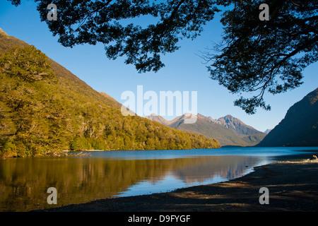 Lake Gunn réflexions montagne, Parc National de Fiordland, Site du patrimoine mondial de l'UNESCO, l'île du Sud, Banque D'Images