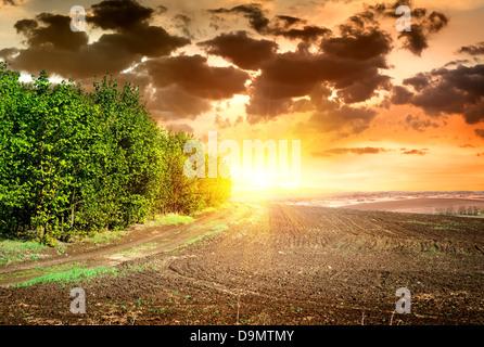 Scène sur coucher de soleil sur champ labouré noir Banque D'Images