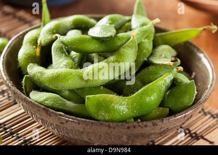Edamame organiques verts cuits avec du sel de mer dans un contexte Banque D'Images