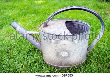 Vieux métal arrosoir assis dans l'herbe verte Banque D'Images