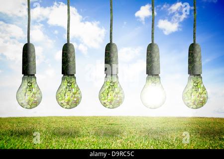 Les ampoules en ligne Banque D'Images