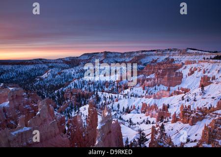 Les cheminées dans l'Amphithéâtre de Bryce Canyon à l'aube, Utah, USA Banque D'Images